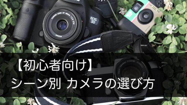 草むらにおいたカメラ