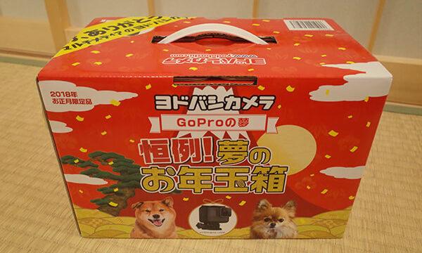 GoProの夢
